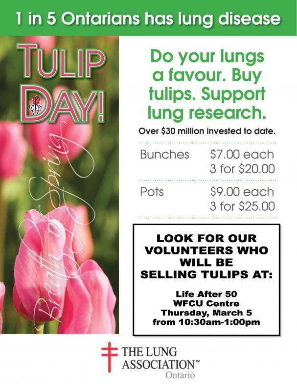 Tulip Sale - East Side Centre